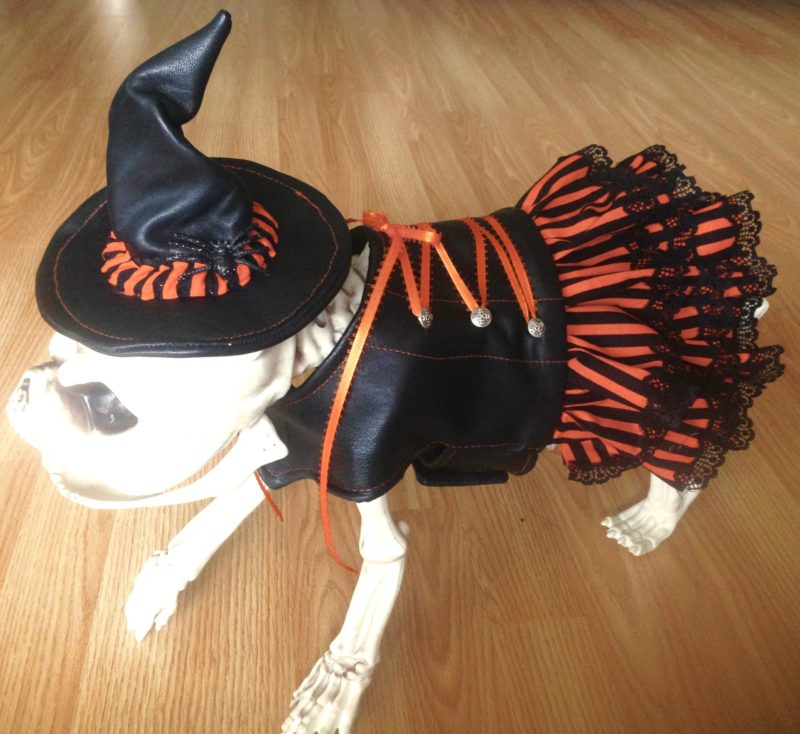 2ececdfcdb9e2 Products. Aviator Dog Costume ...